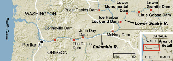 Lower Granite Dam is the fourth of four dams on the Snake River with fish passage capabilities. US Corp of Engineers photo.