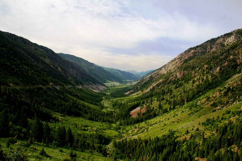 Trail Creek is a major tributary to the Big Wood River near Ketchum. (Trout Unlimited photo)